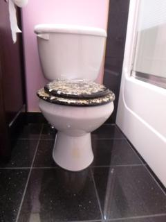 Briggs Toilet C/w Loo With A View Toilet Seat **Note: Buyer Responsible For Load Out, Located Offsite For More Info Contact Shazeeda @780-721-4178**