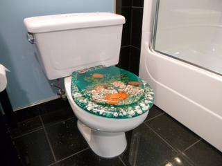 Bathroom Toilet C/w Loo With A View Toilet Seat **Note: Buyer Responsible For Load Out, Located Offsite For More Info Contact Shazeeda @780-721-4178**