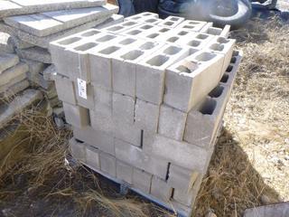 """Quantity of Cinder Blocks 15 1/2"""" x 5 1/2""""."""