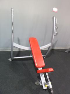 Cybex Model 16050-90 Adjustable Bench Incline Press