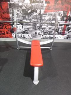 Cybex Model 1610-90 Flat Bench Press