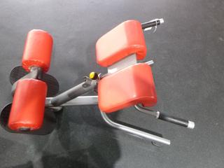 Matrix Back Extension Bench