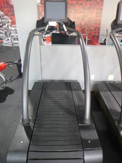 Woodway 120V Treadmill