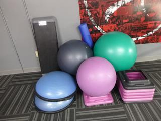 Qty Of (3) Exercise Balls, (2) Steppers, (2) Balance Trainers And Stands