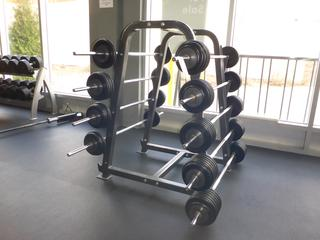 10-Tier Rack C/w Weights And Bars