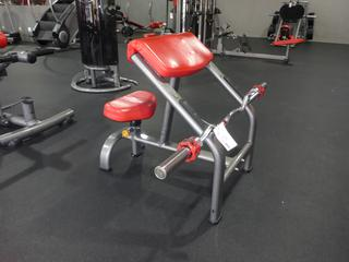 Matrix Preacher Curl Bench C/w Bar