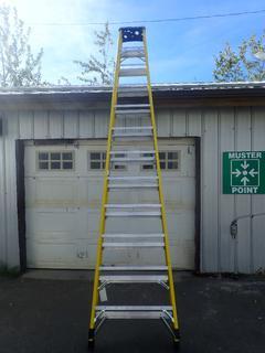 Featherlite 12ft Step Ladder