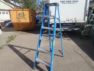 Werner 6ft Step Ladder