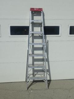 Reynolds 7ft Step Ladder