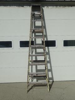 Featherlite 10ft Step Ladder