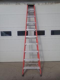 Eagle 10ft Step Ladder