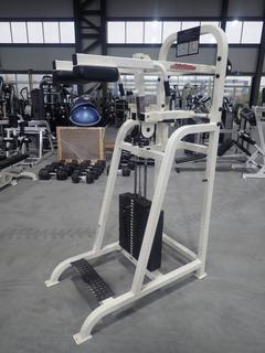 Life Fitness SL65 Standing Calf Machine w/ 395lb Max Weight Cap. SN 92533