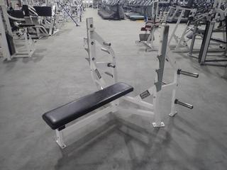Hammer Strength Olympic Flat Bench. SN 2039