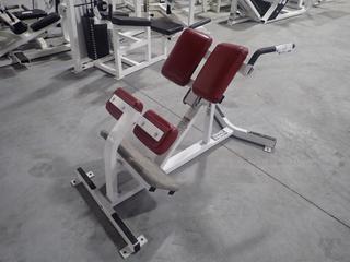 Hammer Strength Model A Back Extension Bench. SN 0205