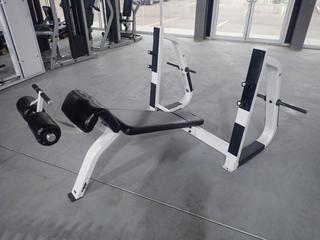 Icarian Olympic Decline Bench