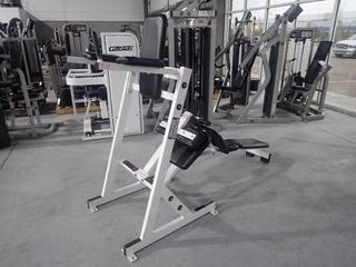 Hammer Strength Model D Abdominal Work Station. SN 1570 *Note: Tear On Arm Rest*