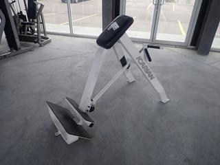 Icarian Plate Loaded T-Bar Incline Lever Row Machine