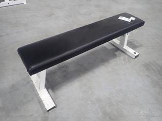 Pulse Fitness B101 Flat Bench. SN 808511