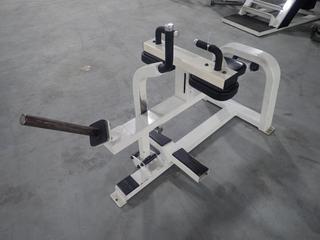 Icarian Seated Calf Raise Machine