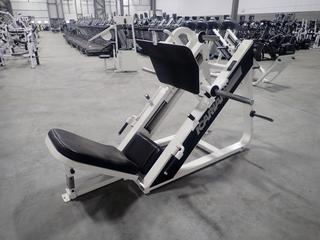 Icarian Plate Loaded Angled Leg Press Machine