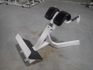 Icarian Adjustable Back Extension Bench