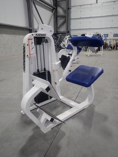 Icarian 313 Back Extension Machine w/ 280lb Max Weight Cap.