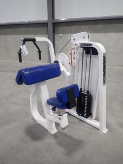 Icarian Triceps Extension 208 Machine w/ 75lb Max Weight Cap