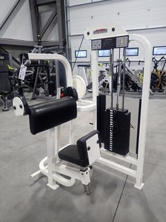 Life Fitness SU70 Arm Extension Machine w/ 190lb Max Weight Cap. SN 45438