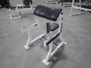 Hammer Strength Seated Arm Curl Bench. SN 0729