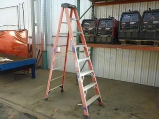 Werner 8ft Step Ladder