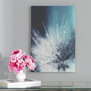 "Willa Arlo Interiors 'Morning Sonata' Photo Graphic Print on Canvas (WRLO6743_22800897) - 24"" x 16"""