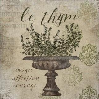 "Buy Art For Less 'French Herbs Thyme' by Beth Albert Graphic Art on Canvas (BYAR1365_16568970) - 24""  Square"