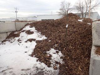 Lot of Cedar Wood Chip Mulch.