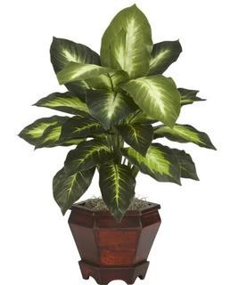 "Nearly Natural-20.5""H Dieffenbachia Silk Desk Top Plant in Pot, Set Of 2"