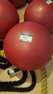 "22"" Exercise Ball"