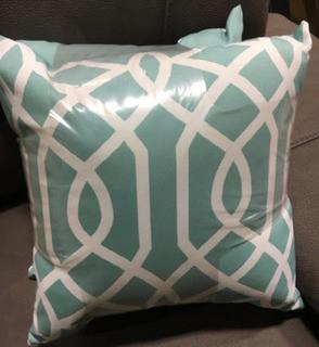 Indoor/Outdoor Accent Throw Pillows, 2PK 16x16""