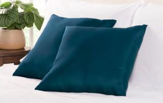 Wayfair Basics Throw Pillow, Navy, 2PC 18x18""