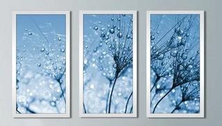 "Dewy Dandelion Flower Close Up Full' 3 Piece Framed Graphic Art Set 33.5"" H x 52.5"" W x 1"" D"