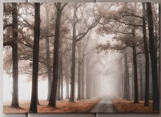 Misty Road' Photographic Print on Wrapped Canvas 24x36""