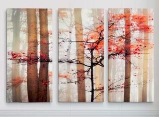 "Orange Awakening' Photographic Print on Wrapped Canvas 32x48"""